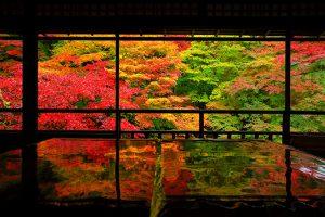 autumn00m